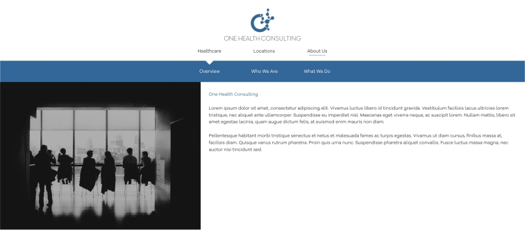 OHC Website 16