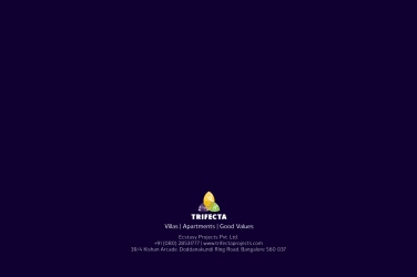 Trifecta Starlight Brochure 54
