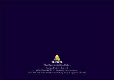 Trifecta Starlight Leaflet 08