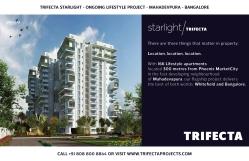 Trifecta Starlight Site Hoardings 02