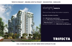 Trifecta Starlight Site Hoardings 02
