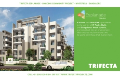 Trifecta Starlight Site Hoardings 03