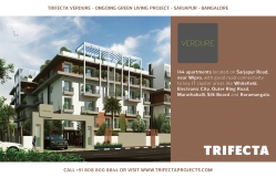 Trifecta Starlight Site Hoardings 04